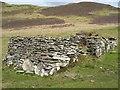 NG6216 : Ruined House in Boreraig by John Allan