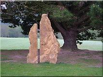 ST8707 : Sculpture, Blandford School by Derek Harper