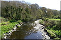 SN9995 : Afon Carno by Peter Standing
