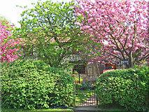 SE7576 : Great Habton - Cottage by Stephen Horncastle