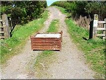 NZ3343 : Roadblock near Pittington by Oliver Dixon