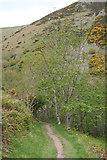 SS6549 : Martinhoe: near Heddon's Mouth Cleave by Martin Bodman