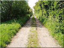 SK7369 : Hop-Yard Lane, Tuxford, Nottinghamshire by Robert Goulden