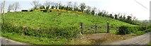 H6458 : Rath at Ballyreagh, Ballygawley by Kenneth  Allen