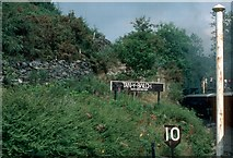 SH6441 : Tan y Bwlch 424ft above sea level, 1984 by E Gammie