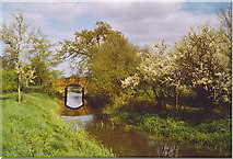 TQ0524 : Lording's Bridge, Wey and Arun Canal. by Colin Smith