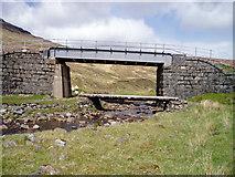 NN3468 : Rail and footpath bridges over the Allt Luib Ruairidh by David Gruar