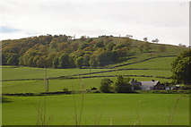NO2650 : Barry Hill near Alyth by Sylvia Barrow