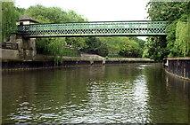 ST7564 : Dolemeads Bridge, River Avon, Bath by Pierre Terre