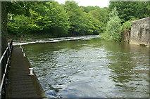 ST7264 : Below Weston Lock, River Avon by Pierre Terre