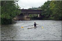 ST7065 : River Avon, Kelston Park Railway Bridge by Pierre Terre