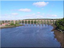 NT9953 : The Royal Border Bridge, Berwick on Tweed by N Chadwick