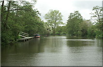 ST6968 : River Avon above Swineford by Pierre Terre