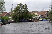 ST6669 : River Avon, Broad Mead by Pierre Terre