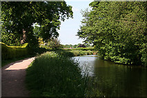 SS9712 : Tiverton: Grand Western Canal at Tidcombe by Martin Bodman