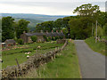 NY6858 : Cottages at Asholme by Andrew Smith