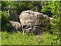 TQ3834 : Stone Farm Rocks by N Chadwick