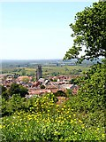 ST5038 : Bushy Coombe looking down on Glastonbury by Linda Bailey