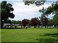 SO8144 : Blackmore Guide Camp by Bob Embleton