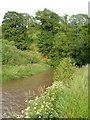 SY0886 : River Otter below Burnthouse Farm by Derek Harper