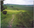 SU0765 : The Wansdyke, North-west of Tan Hill. by Colin Smith