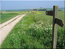 SE8665 : Wolds Way by Stephen Horncastle