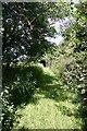 TL7756 : Footpath to Depden Church by Bob Jones