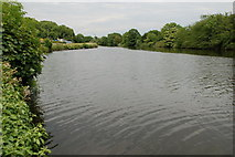 J0923 : Newry ship canal near Dromalane by Albert Bridge