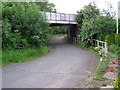 NZ3613 : Low Goosepool : Railway  Bridge by Hugh Mortimer
