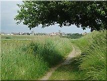 TM5075 : Footpath near Southwold by Eileen Henderson