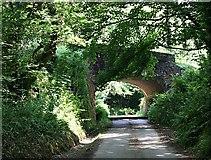 SW9049 : Railway Bridge by Tony Atkin