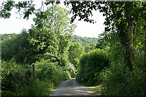SS9520 : Bampton: near Broom Cottage by Martin Bodman