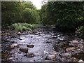 SX5076 : River Tavy, Harford Bridge by Penny Mayes