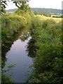 ST3022 : Chard Canal near Lillesdon by Derek Harper