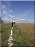 TQ3710 : South Downs Way: Balmer Down by Sheila Russell