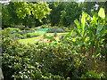 TQ3473 : African Garden, Horniman Gardens by Danny P Robinson