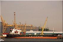 J1418 : Warrenpoint harbour by Albert Bridge