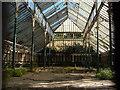 SJ3593 : Conservatory, Stanley Park by Derek Harper