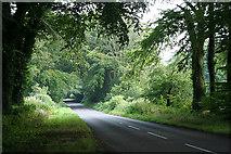 ST2114 : Churchstanton: the road to Churchingford by Martin Bodman