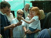 SH7972 : Fascination With Wild Birds at Bodnant Garden by Neil Kennedy
