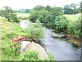 NY4758 : River Irthing by Oliver Dixon