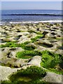 SY9976 : Rock pools, Dancing Ledge by Hugh Chevallier