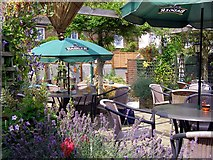 ST6601 : Rear garden at the Royal Oak, Cerne Abbas by Jim Champion