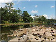 NY5046 : River Eden by Andrew Smith