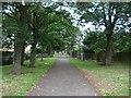 NZ4928 : Path off A689 by DS Pugh