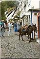 """SS3124 : Clovelly """"Donkey Express"""" by Neil Kennedy"""