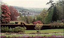 SX4268 : Cotehele gardens by Neil Kennedy