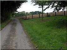 SO6462 : Driveway to Hursley Farm, Stoke Bliss by Philip Halling
