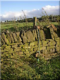 SE1220 : How to stabilise a loose fence-post, Rastrick by Humphrey Bolton