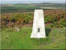 SK2773 : Triangulation Pillar north end of Birchen Edge by Nikki Mahadevan